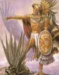 aloehistoria