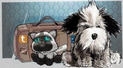 viajes mascotas--644x362